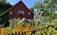 Jeder dritte Rentner findet sein Eigenheim zu groß