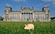 Deutsche wollen 2017 mehr sparen