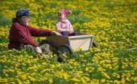 Viele Ruheständler unterstützen ihre Familie finanziell