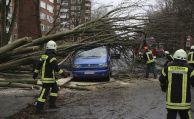 """Sturm """"Friederike"""" kostet Versicherer wohl 500 Millionen Euro"""