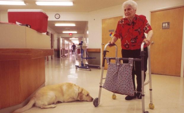 Das verändert sich aus Versicherungssicht bei Pflegebedürftigkeit