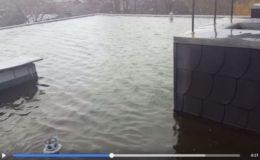 Überschwemmtes Flachdach wird zum Klick-Hit