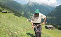 Flexi-Rente kommt bei Deutschen gut an