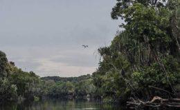 So geht die nachhaltige Absicherung mit Öko-Policen