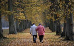 Finanztest nimmt sich Riester-Renten vor