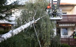 """Versicherungsverband rechnet mit einem """"normalen Schadenjahr 2019"""""""