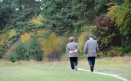 """Gesetzliche Rentenversicherung berät nur """"befriedigend"""""""