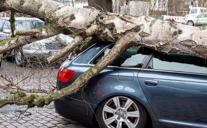 Unfall durch Sturmböe – welche Versicherung zahlt?