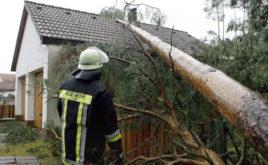 Herbststürme – welche Versicherung zahlt bei welchem Schaden?