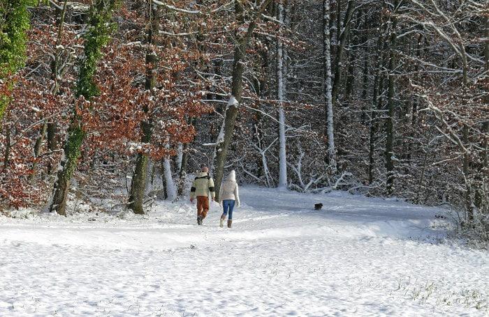 Trotz Erkältung mitten im Leben stehen?