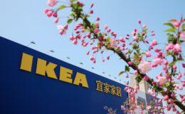 Ikea wird zum Versicherungsanbieter
