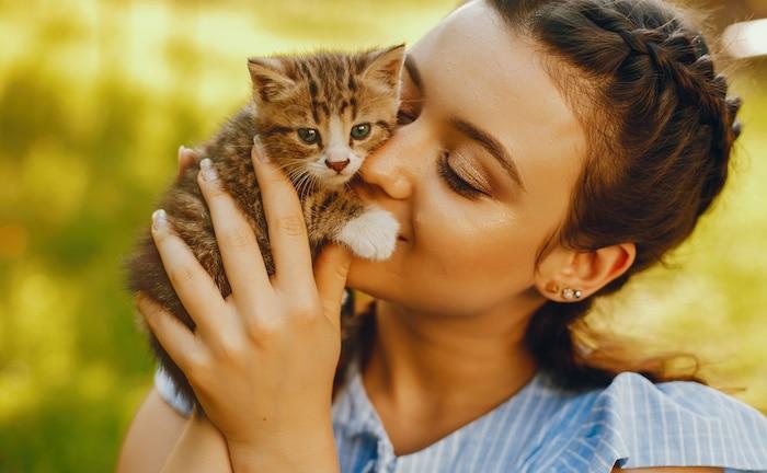 Auto und Haustier wichtiger als eigene Arbeitskraft