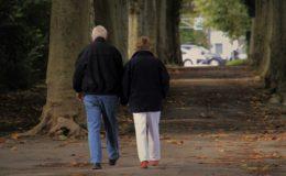 BDA-Chef kritisiert Rentenerhöhung