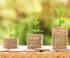 Fondsvermögensverwaltung mit Performance-Vorteil