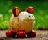 Auf teure Garantien können Langfrist-Sparer verzichten