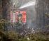 So sichern sich Waldbesitzer gegen Brände ab