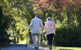 Deutschland im globalen Altersvorsorge-Ranking auf Platz 11