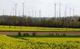 Netzwerk für Nachhaltigkeit in der Versicherungswirtschaft startet