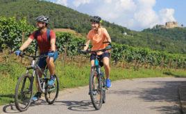 Fahrrad-Boom bietet neue Vertriebs-Chancen