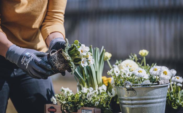 Warum uns Gartenarbeit glücklich und gesund macht
