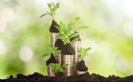 Taxonomie nicht immer ein Maßstab für nachhaltige Fonds
