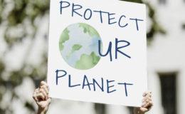 Für jeden Dritten ist Nachhaltigkeit ein wichtiges Auswahlkriterium