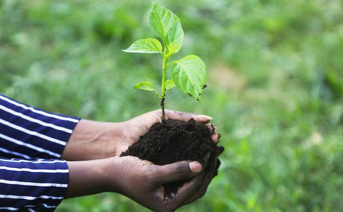 Deutsche Anleger halten 360 Milliarden Euro in Nachhaltigkeitsfonds