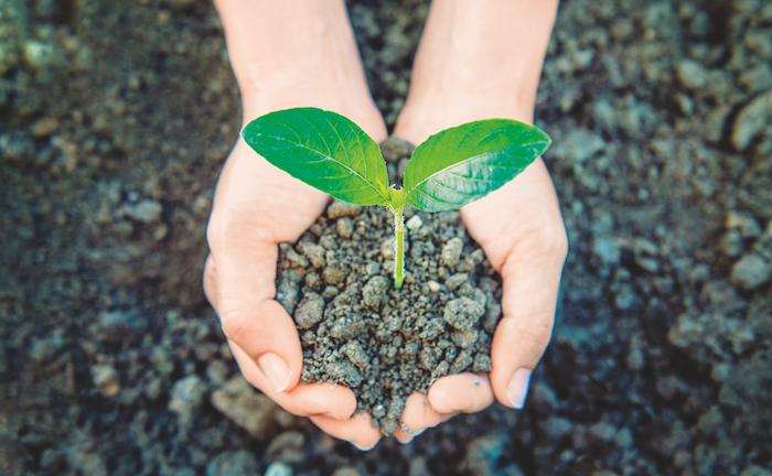Grüne Berater punkten bei grünen Praxen