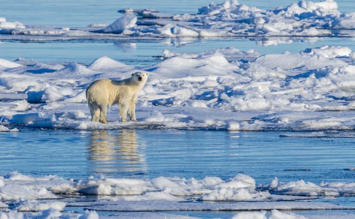 191 Milliarden Euro müssten jedes Jahr in den Klimaschutz fließen