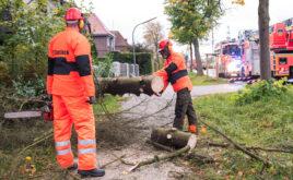 Aktuare rechnen mit 250 Millionen Euro Schaden
